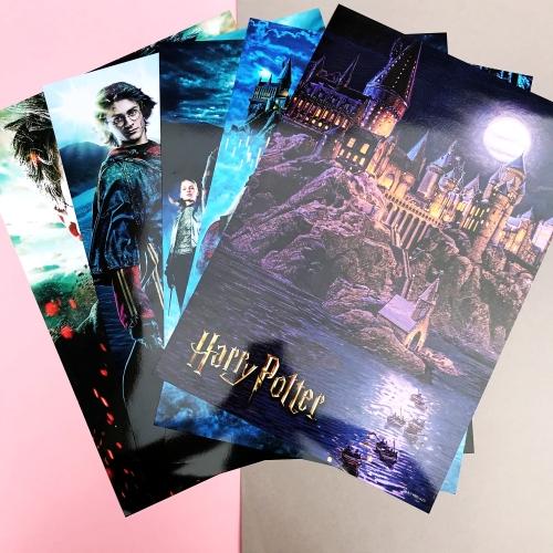 Harry Potter 35x50 Duvar Posteri