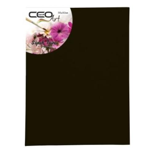 CeoArt Siyah Tuval - 35x50 cm